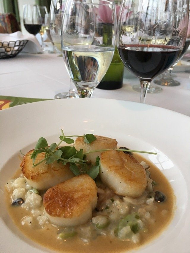 Citricos scallops and wine