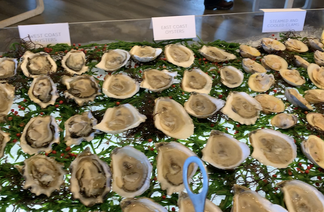 ce brunch oysters
