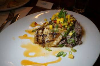mitchells grouper